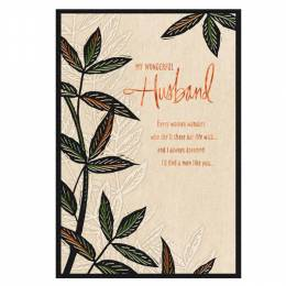 Hallmark Incredible Father and Wonderful Husband Father's Day Card
