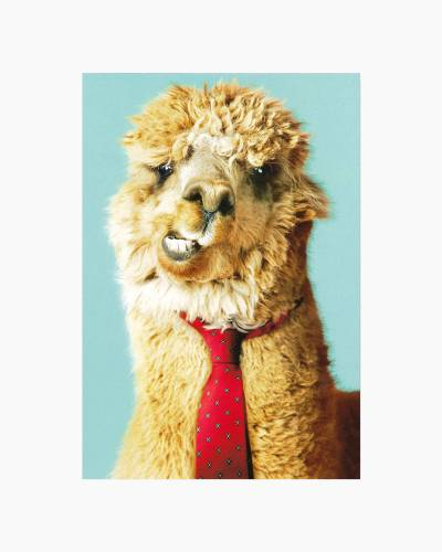 Llove You Llots Llama Father's Day Card