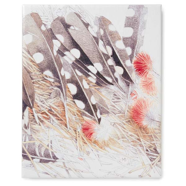 Hallmark Feather Painting 8x10 Wrapped Canvas Art by Marjolein Bastin