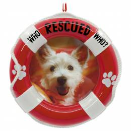 Hallmark Pet Adoption Picture Frame Hallmark Ornament