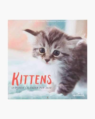 Kittens 2020 Wall Calendar, 12-Month