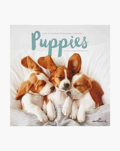 Puppies 2020 Wall Calendar, 12-Month