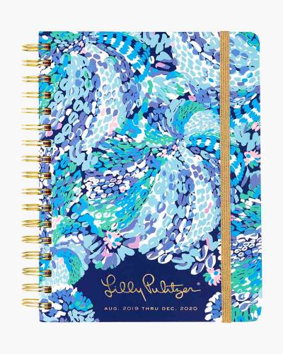 Large 17 Month Agenda in Wave After Wave