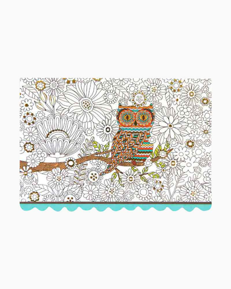 Peter Pauper Press Color Me Owl Boxed Note Cards
