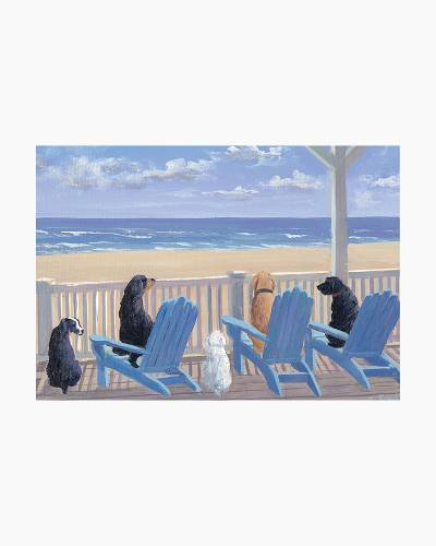 Dogs in Deck Chairs Boxed Note Cards