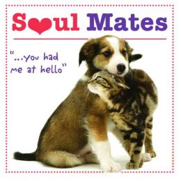 Robin Haywood Soul Mates: You Had Me at Hello Little Gift Book (Hardcover)