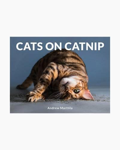 Cats on Catnip (Hardcover)