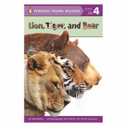 Kate Ritchey Lion, Tiger, and Bear (Paperback)