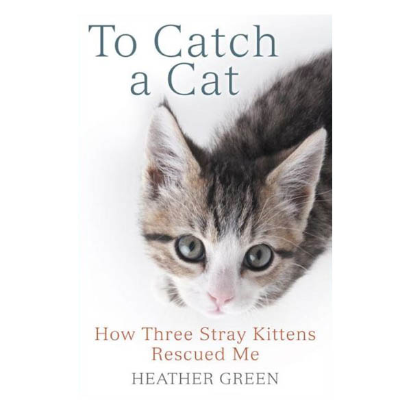 Heather Green To Catch a Cat: How Three Stray Kittens Rescued Me (Paperback)