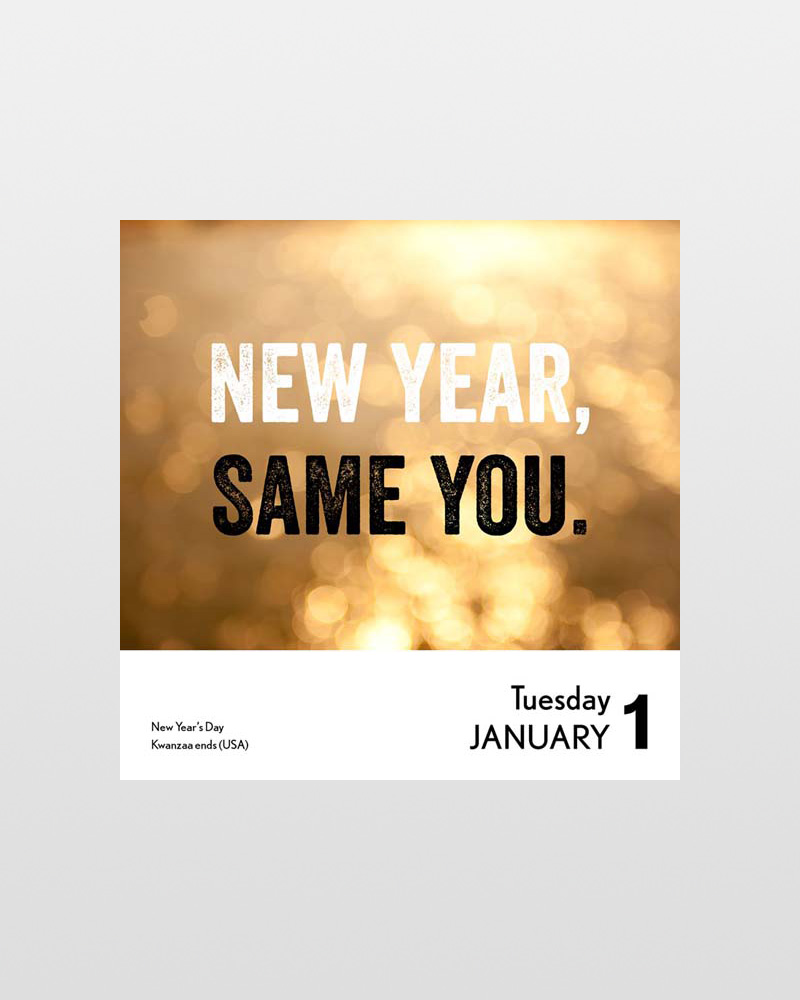 unspirational 2019 desk calendar alternate view