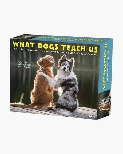 What Dogs Teach Us 2020 Day-to-Day Calendar