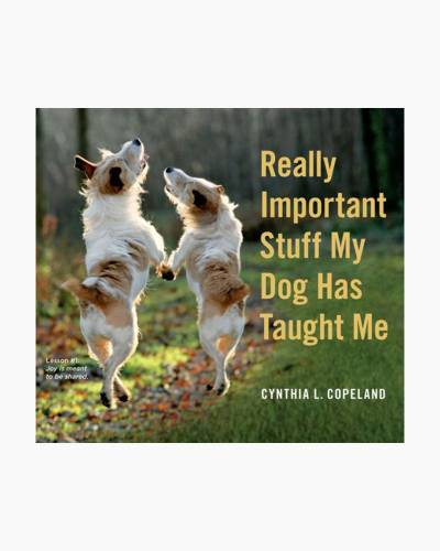 Really Important Stuff My Dog Has Taught Me (Hardcover)
