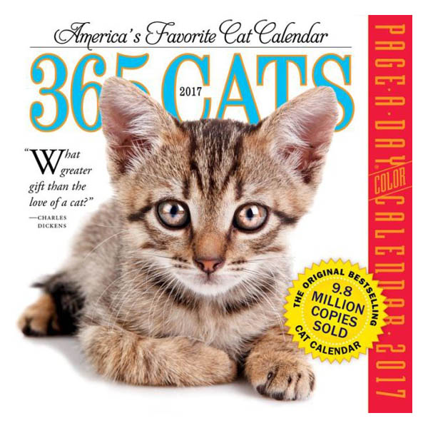 Workman 365 Cats 2017 Day-to-Day Calendar