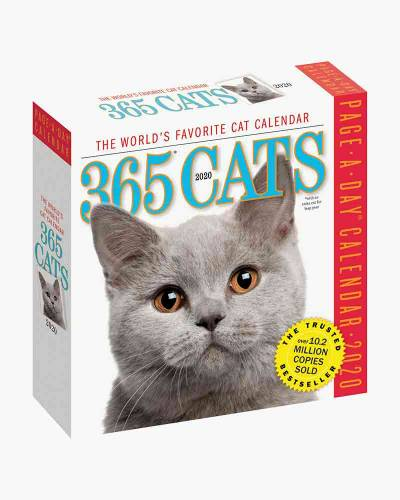 365 Cats 2020 Day-to-Day Calendar