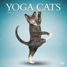 BrownTrout Publishers, Inc. Yoga Cats 2018 Wall Calendar
