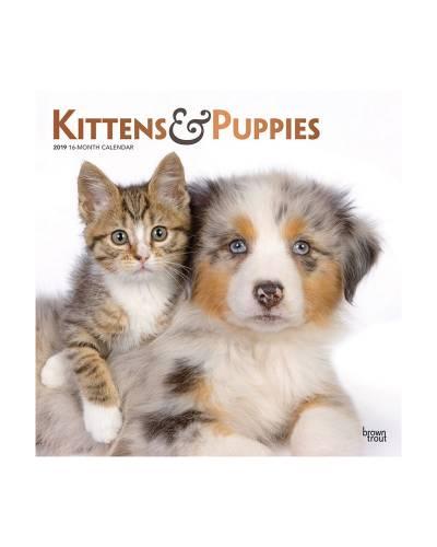 Kittens and Puppies 2019 Wall Calendar