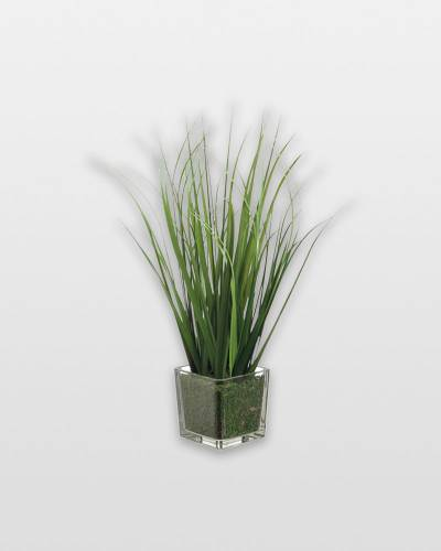 Tall Grass in Glass Vase