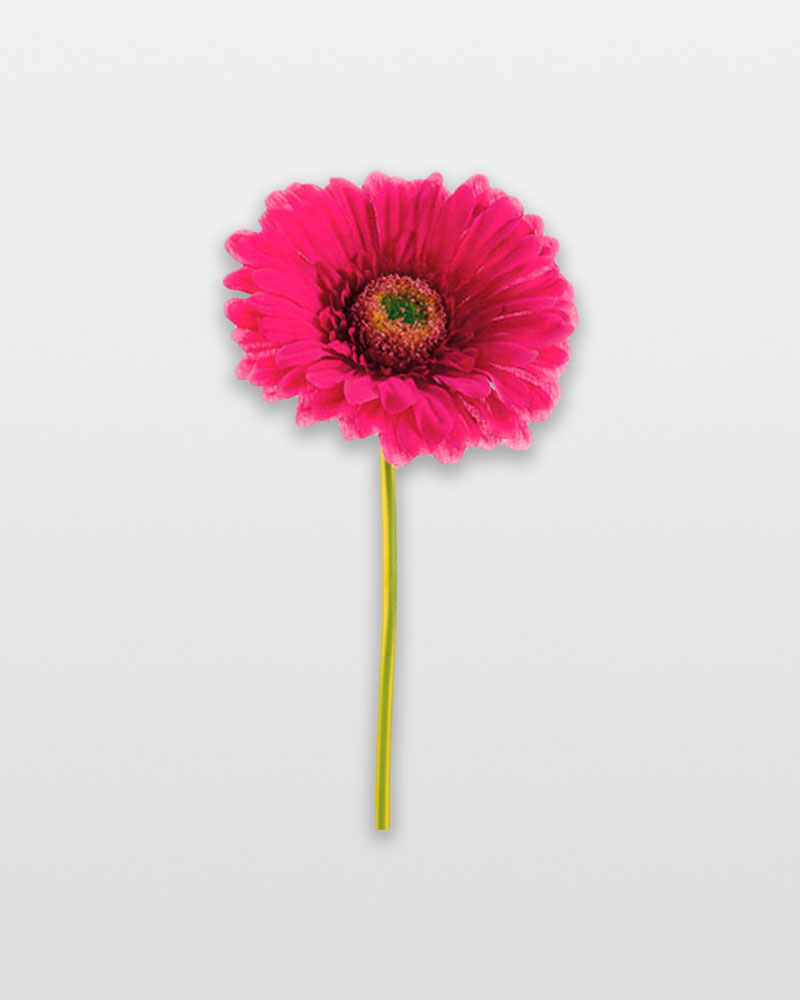 Allstate Floral and Craft Gerbera Daisy Stem