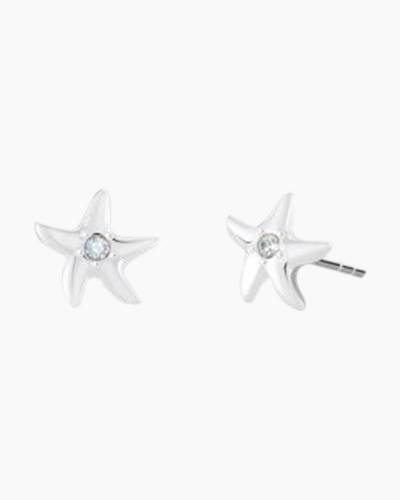 Petite Starfish Stud Earrings in Silver