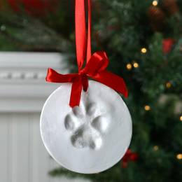 Dennis East Pawprint Ornament Kit