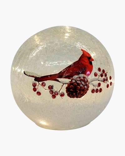 Cardinal Crackle Light-Up Glass Globe 6-inch