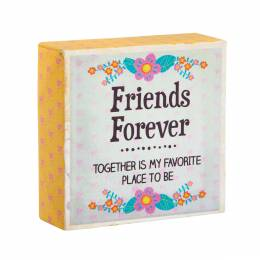 Natural Life Friends Forever Keepsake Canvas Sign