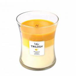 WoodWick Fruits of Summer WoodWick Trilogy Candle