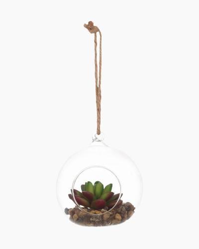 Faux Succulent Plant Hanging Terrarium (Assorted)