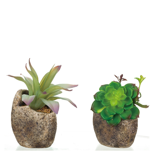 Transpac Imports Faux Succulent in Rock Pot (Assorted)
