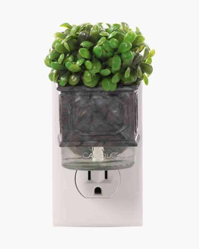 Boxwood Topiary ScentPlug Diffuser