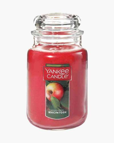 Macintosh Large Jar Candle