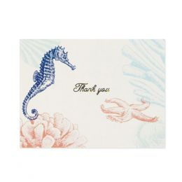 C.R. Gibson Thank You Notes - Coral Reef