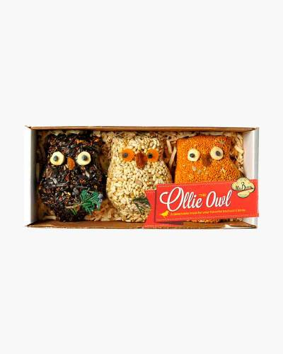 Ollie the Owl Seed Cake