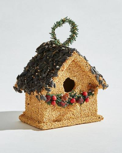 Bird Seed Cottage with Garland