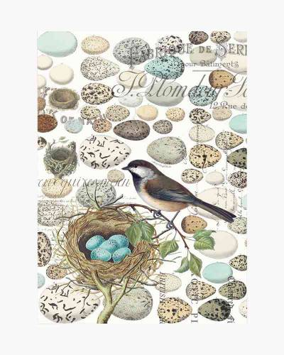 Nest and Eggs Kitchen Towel