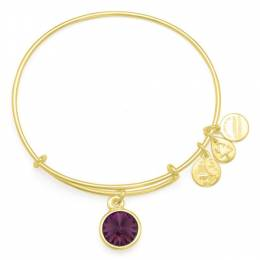 Alex and Ani February Birthstone Charm Bangle in Shiny Gold