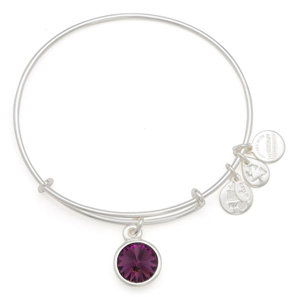 Alex and Ani February Birthstone Charm Bangle in Shiny Silver