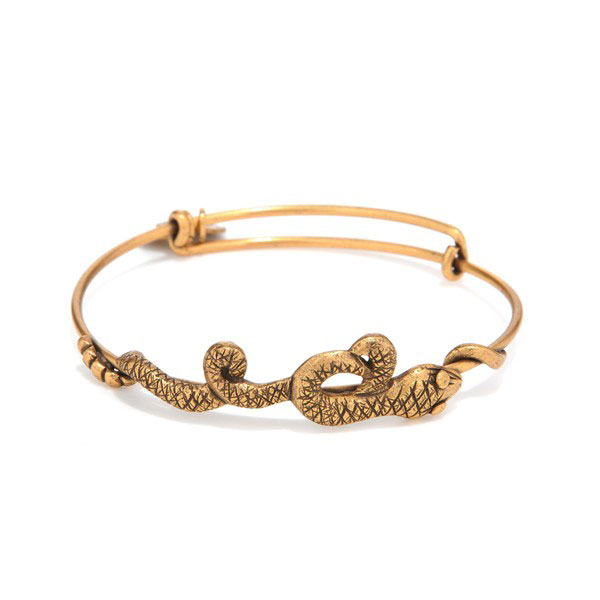 Alex and Ani Serpent Wrap Bracelet