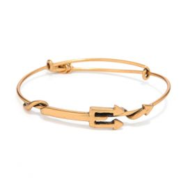 Alex and Ani Trident Wrap Bracelet