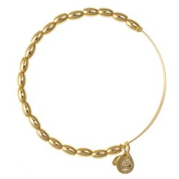 Alex and Ani Jordan Beaded Bangle