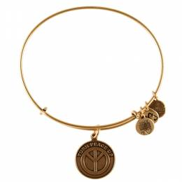 Alex and Ani Turn Peace Up Charm Bangle