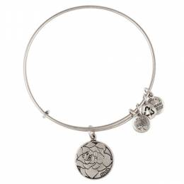 Alex and Ani Nana Charm Bangle