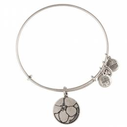 Alex and Ani Granddaughter Charm Bangle