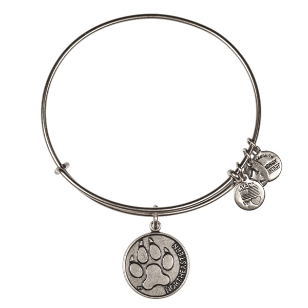Alex and Ani Northeastern University Alumni Charm Bangle in Rafaelian Silver Finish