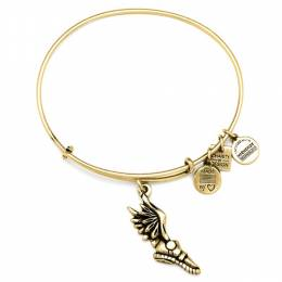 ALEX AND ANI Champion Charm Bangle
