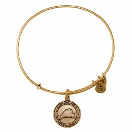 Alex and Ani Martha's Vineyard Charm Bangle in Rafaelian Gold