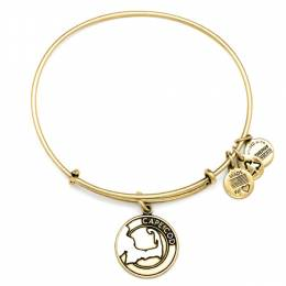 Alex and Ani Cape Cod Charm Bangle