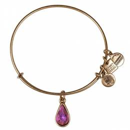 Alex and Ani Pink Living Water Charm Bangle