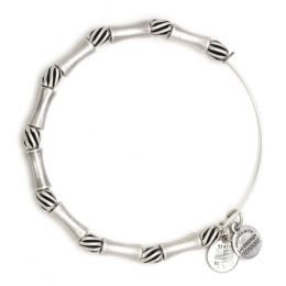 Alex and Ani Constellation Beaded Bangle