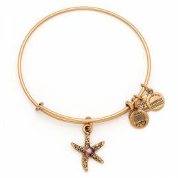 Alex and Ani Arms Of Strength Charm Bangle in Rafaelian Gold Finish